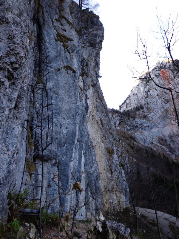 Nv >> Rax - Alpenvereinssteig